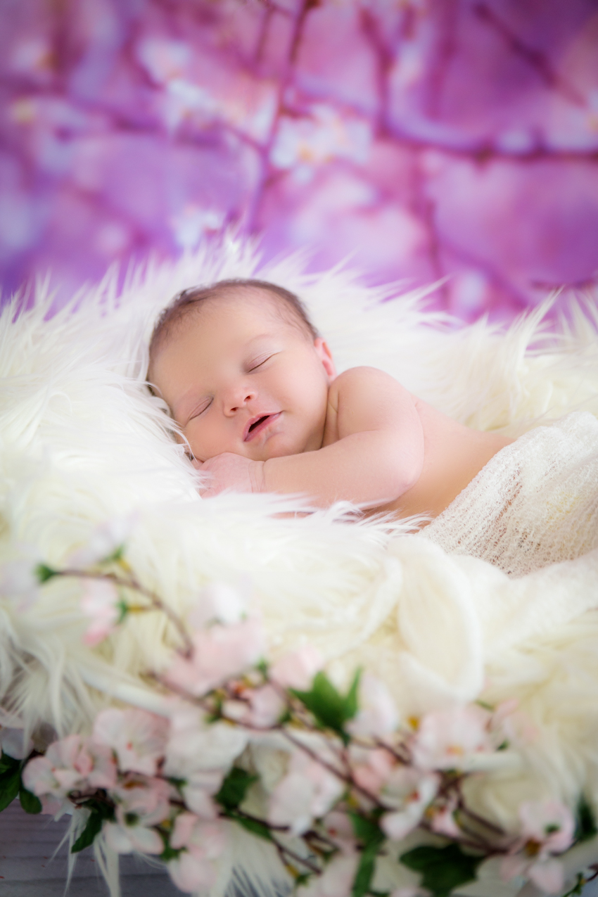 Babyfotoshooting-Newbornfotoshooting-Neugeborenenfotos-Rheinfelden-Saeckingen (1 von 6)