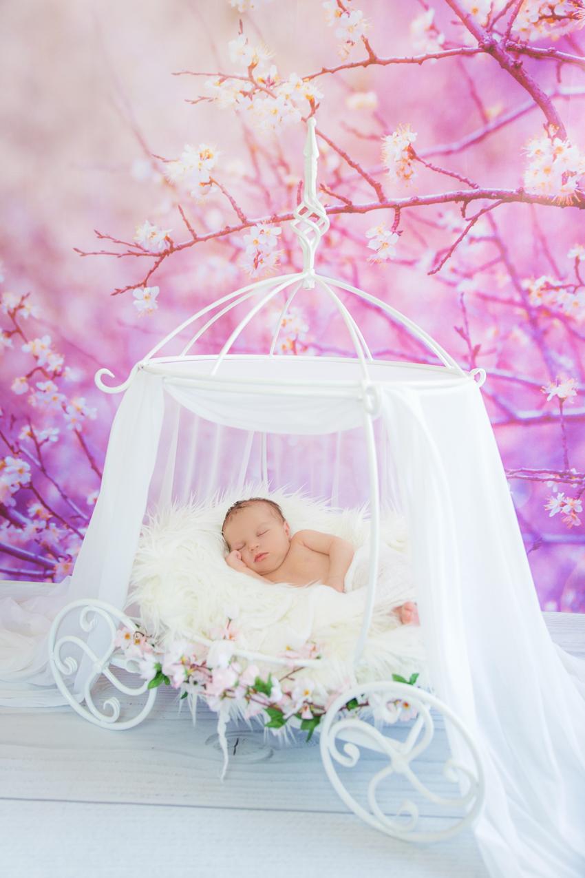 Babyfotoshooting-Newbornfotoshooting-Neugeborenenfotos-Rheinfelden-Saeckingen (2 von 6)